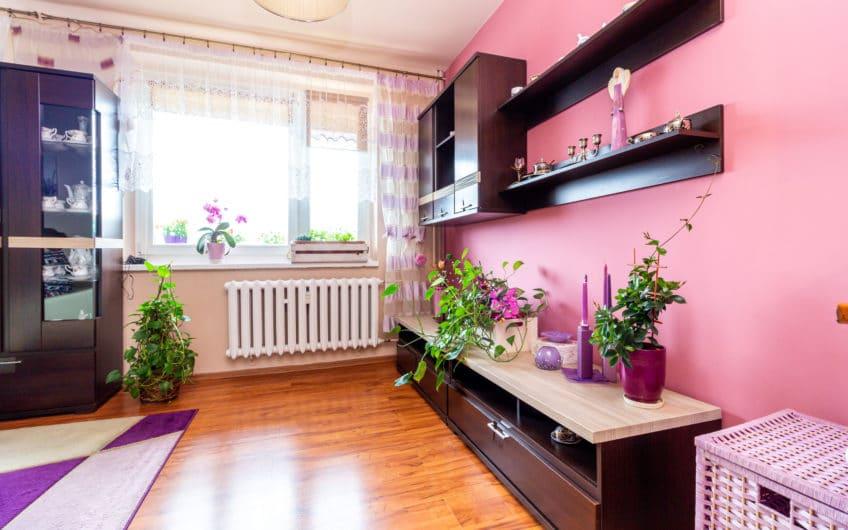 Ustawne Mieszkanie M-4 56m2 Dla Rodziny Żory